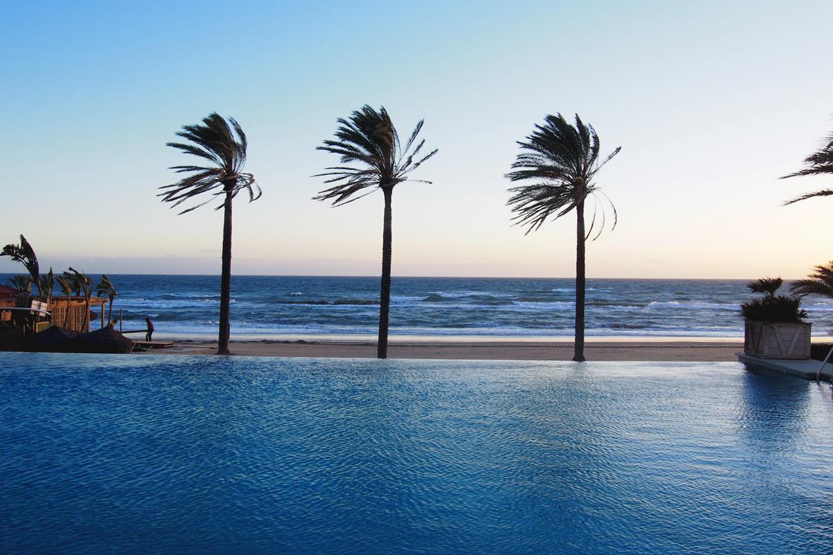 Palmiers marbella plage mer et piscine imagelogger photo for Piscine marbella
