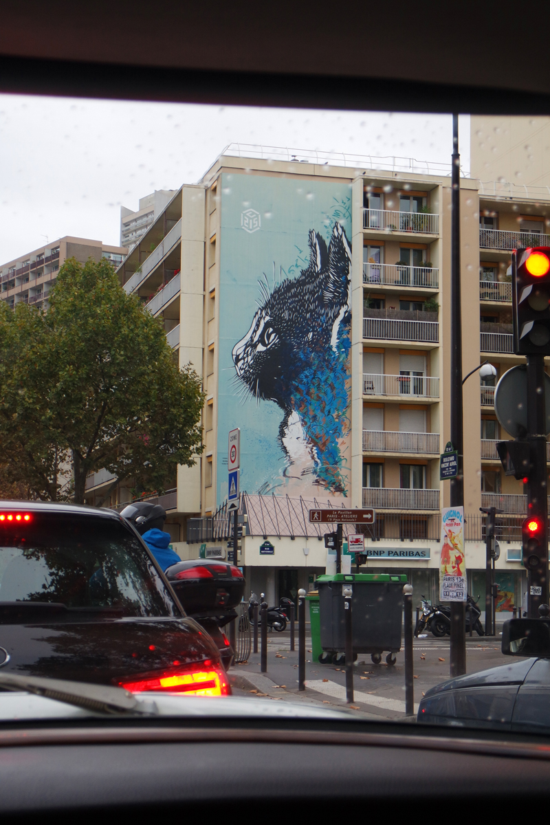 Chat-cat-wall-by-C215-Christian-Guémy-street-art-graffiti-vue-de-voiture-de-collection-Paris-Balade-visite-insolite-city-tour-capitale-photo-by-United-States-of-paris-blog