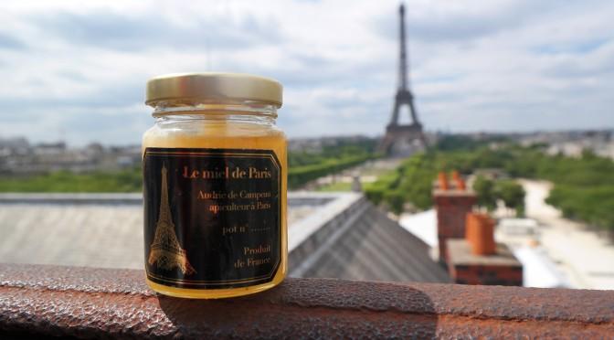 Le Miel de Paris : Audric partage sa passion des abeilles en plein Paris