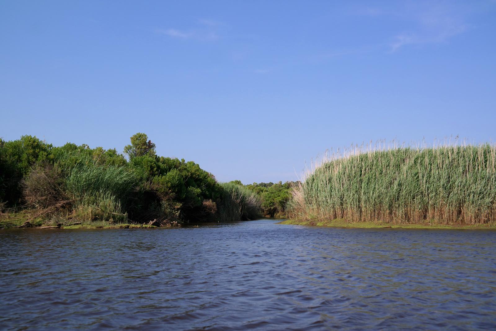 Parc-Naturel-Régional-des-Landes-Gascogne-barque-galupe-Lou-Bateleyre-balade-découverte-commentée-avec-batelier-Gascon-Bassin-d-Arcachon-rivière-eyre-Biganos-photo-by-usofparis-blog