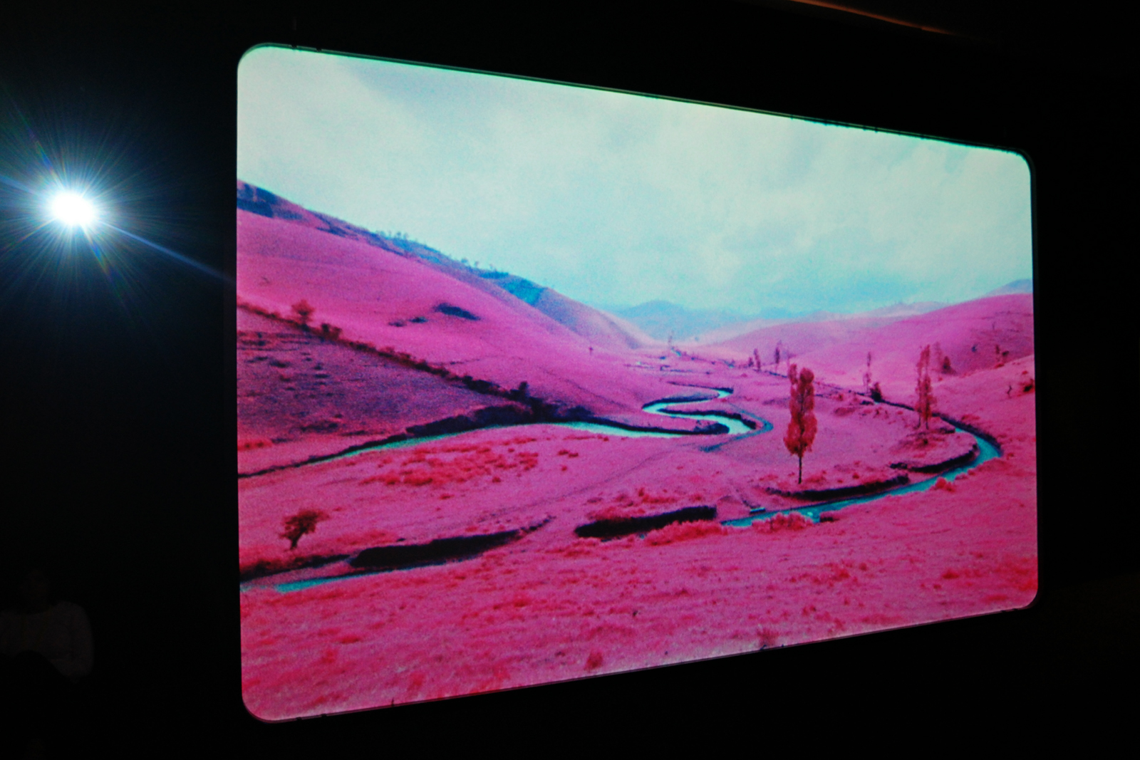 Landscape The Enclave 2012-2015 by Richard Mosse Jack Shainman Gallery exhibition expo Tu dois changer ta vie Tripostal Lille 3000 Renaissance curator Fabrice Bousteau
