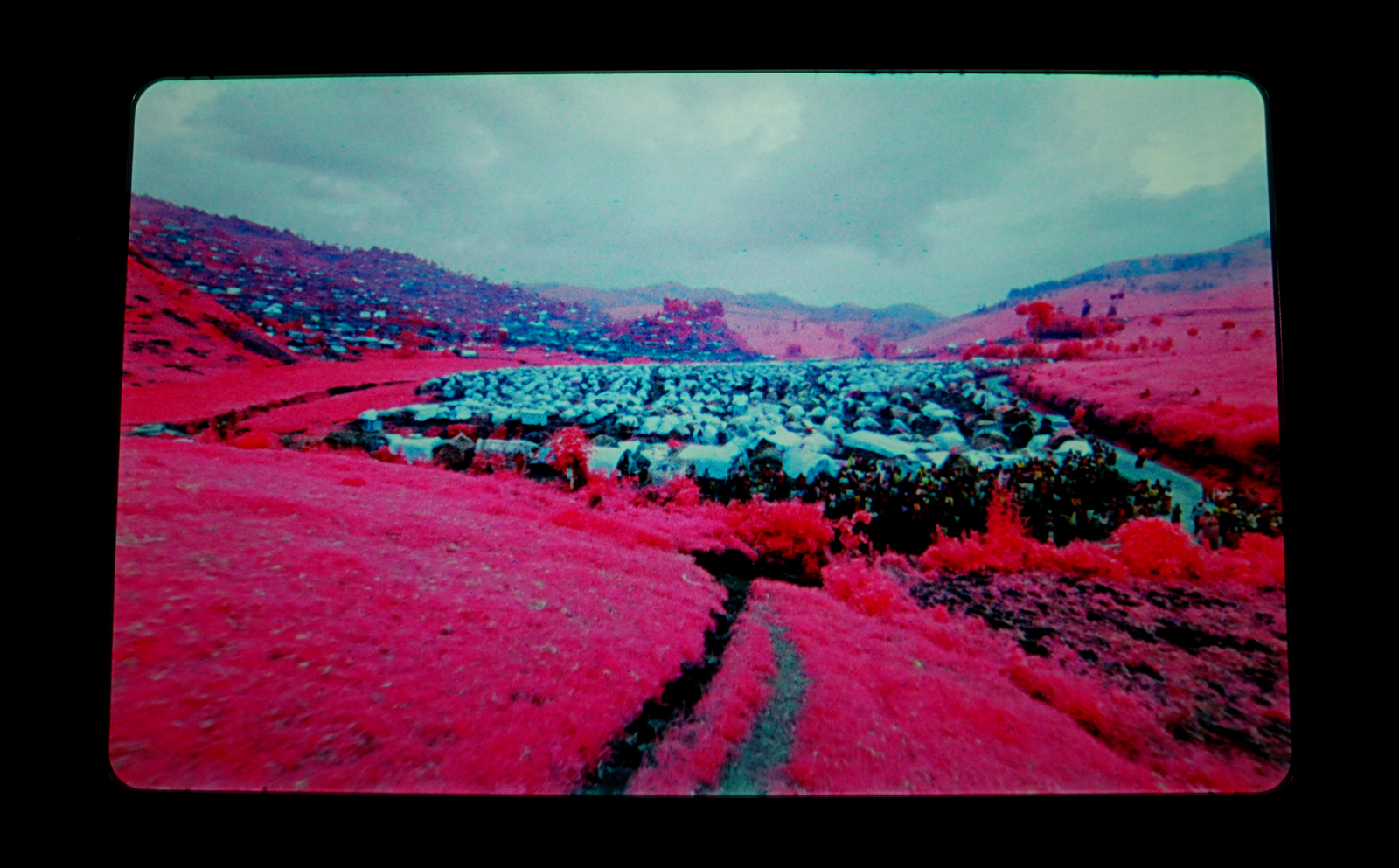 The Enclave, 2012-2015, Richard Mosse