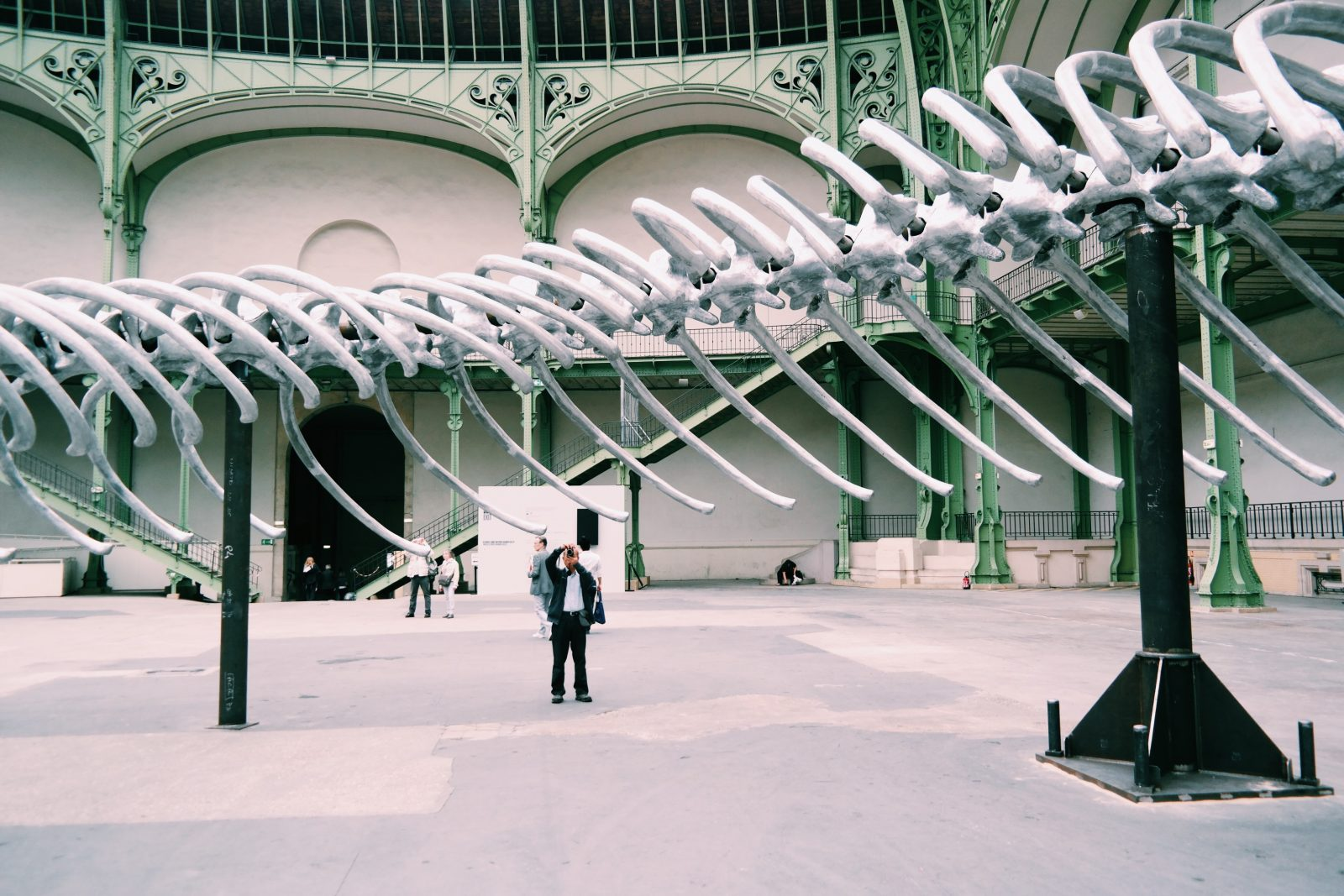 Monumenta-2016-Empires-Huang-Yong-Ping-Grand-Palais-Paris-Nef-photographe-du-squelette-serpent-Kamel-Mennour-photo-usofparis-blog