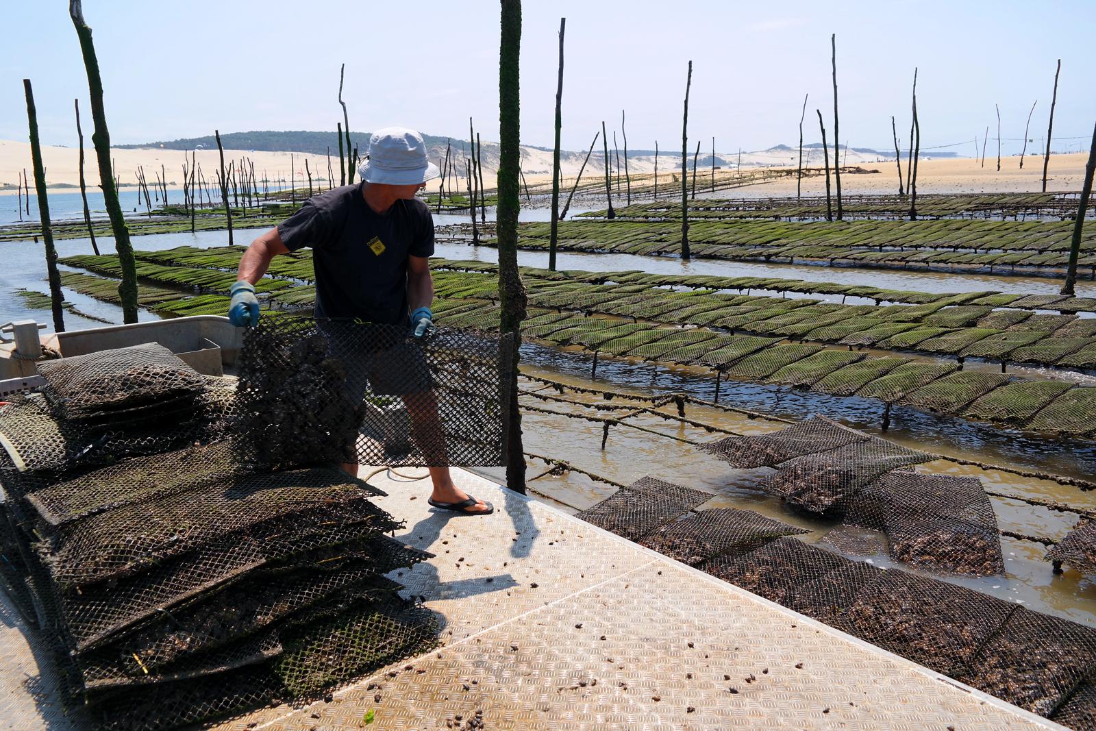 Eric Daugès ostréiculteur du Bassin d arcachon poches à huitres bateau Eole sortie à la marée tourisme expérience photo usofparis blog