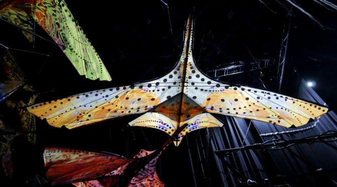 Toruk : coulisses et secrets de création du Cirque du Soleil