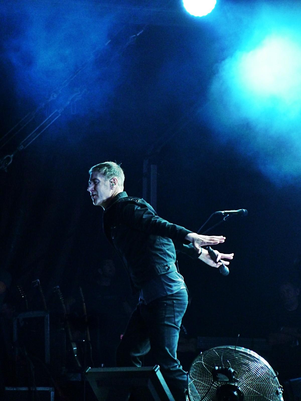 Etienne Daho concert Rock en Seine 2015 festival dernier live de la tournée musique photo de scène by united states of paris blog