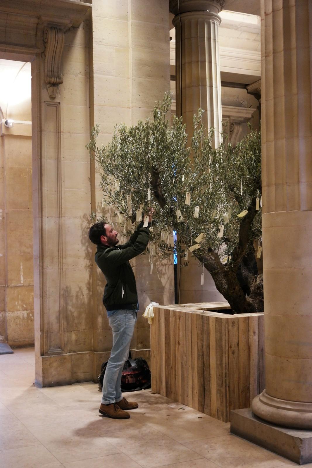 Wish Tree, 1990-2015, Yoko Ono