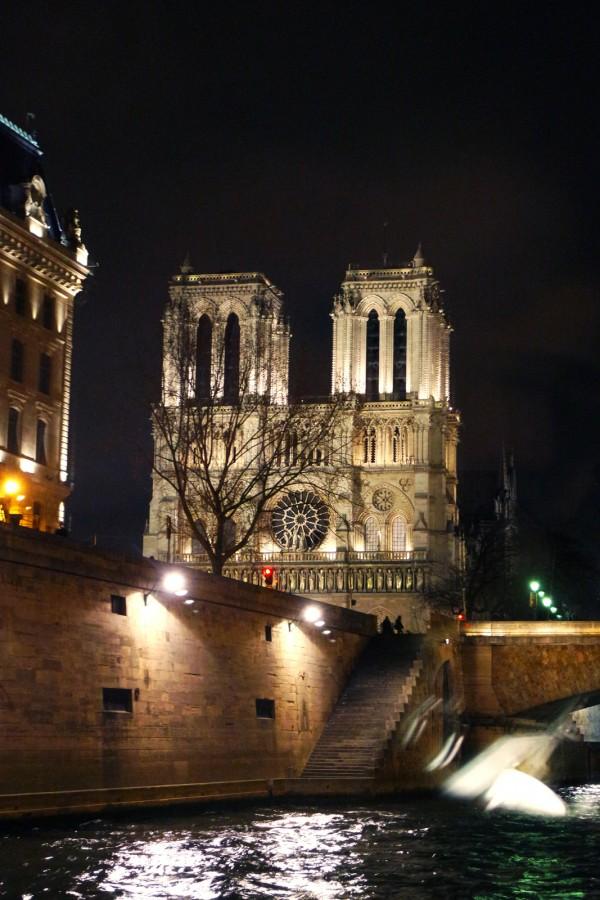 Bateaux parisiens avis critique cruise croisière port bourdonnais notre dame tourisme tourist photo by Blog United States of Paris