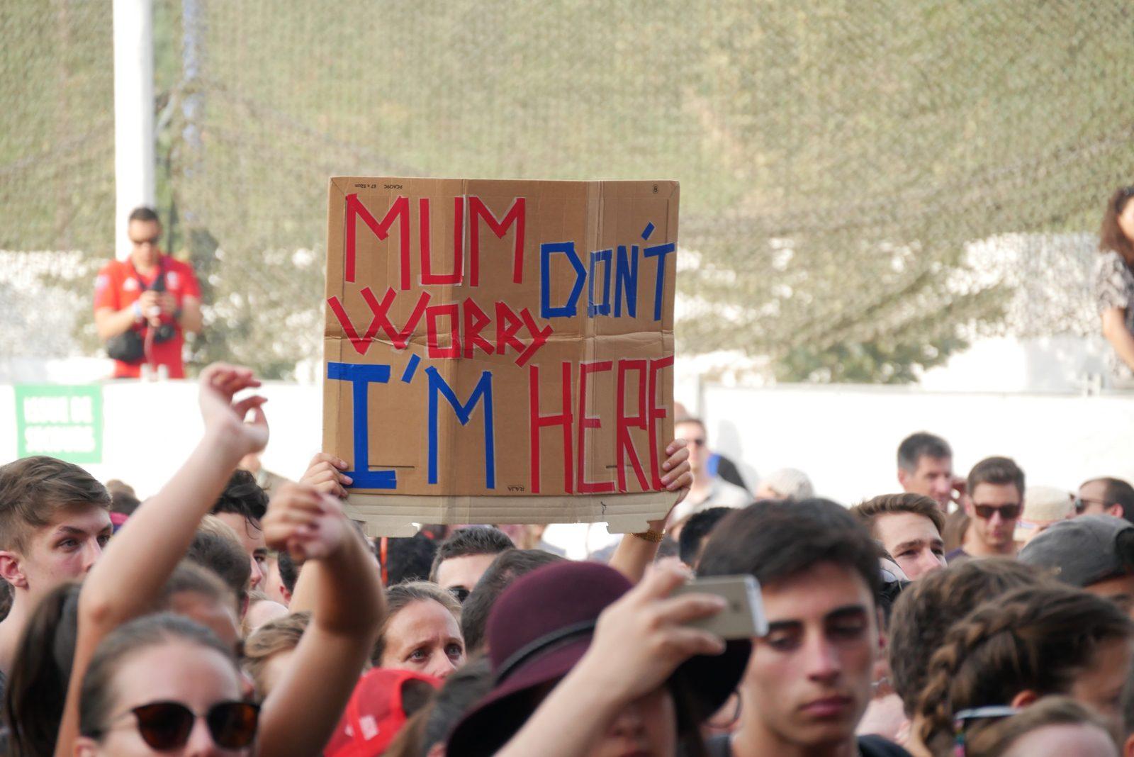 Bastille band message fan Mum don t worry I m here live concert Rock en Seine 2016 festival paris photo usofparis blog