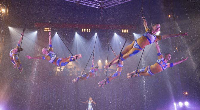 Quintessence d'Alexis Gruss : spectacle aérien, féérique & spectaculaire