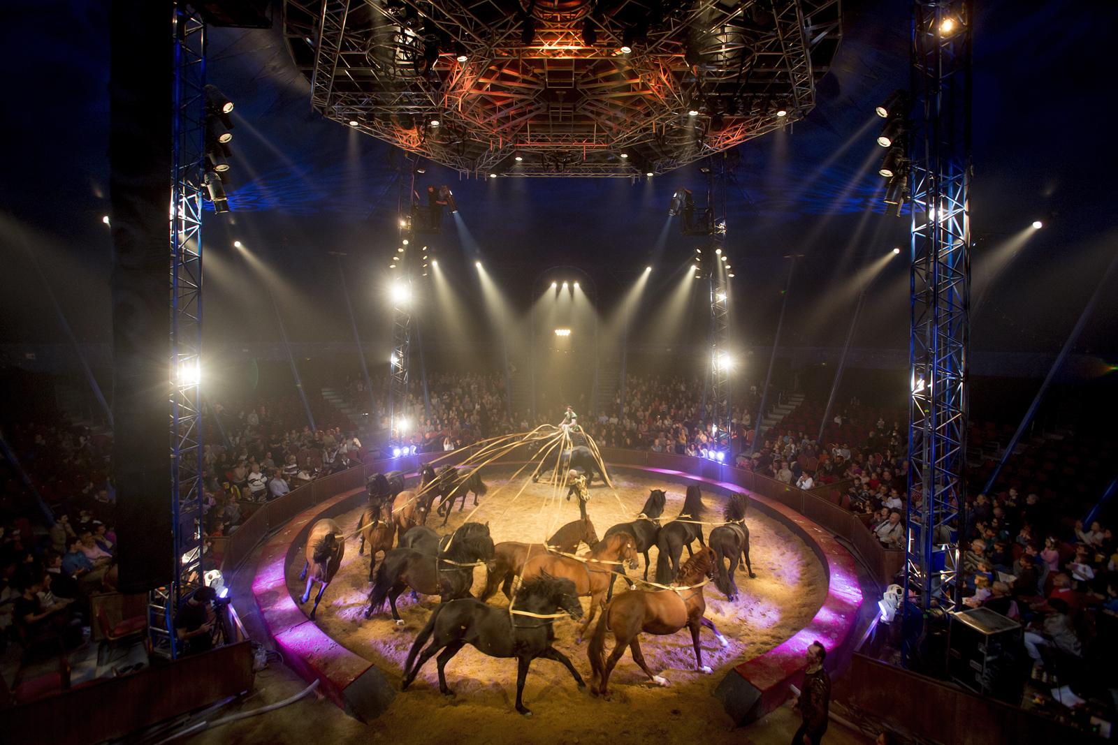 firmin-gruss-numero-poste-equestre-spectacle-quintessence-cirque-alexis-gruss-photo-karim-el-dib