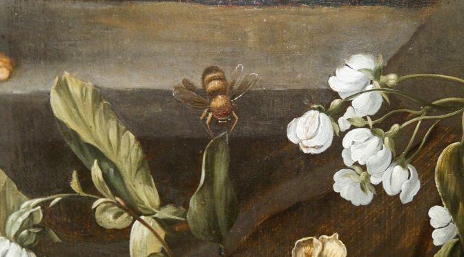 Chefs-d'oeuvre néerlandais @ Musée des Beaux-Arts Reims : révélation