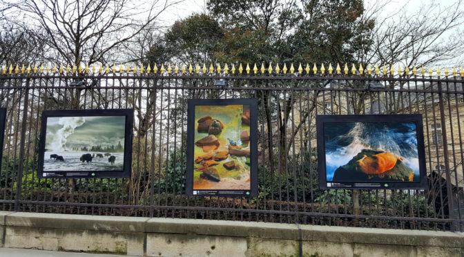 Origines @ Jardin du Luxembourg : la force naturelle de la Terre