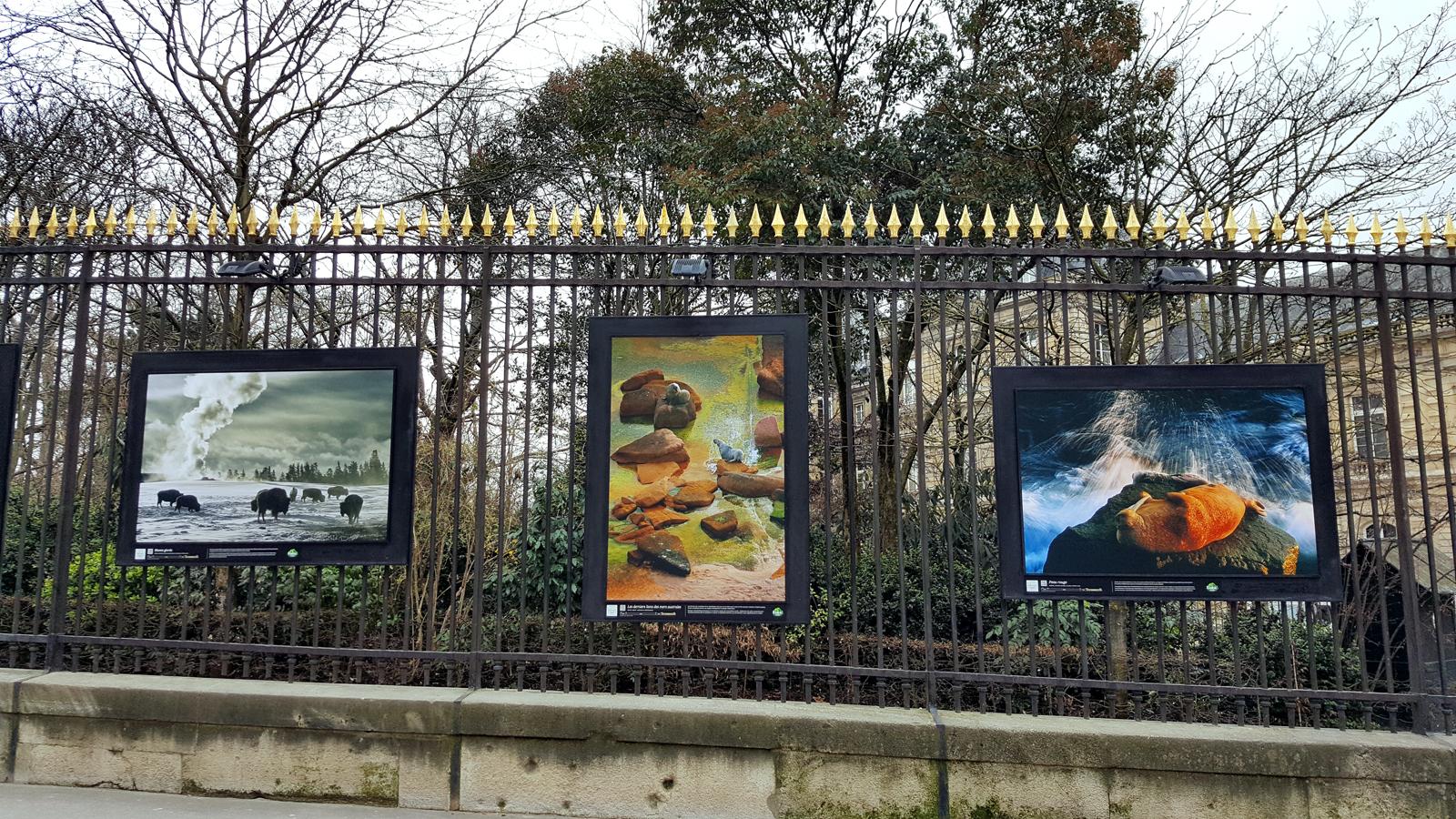 Origines jardin du luxembourg la force naturelle de la terre united states of paris - Jardin du luxembourg exposition ...