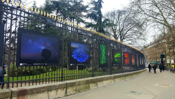 Archives des nature united states of paris - Exposition jardin du luxembourg ...